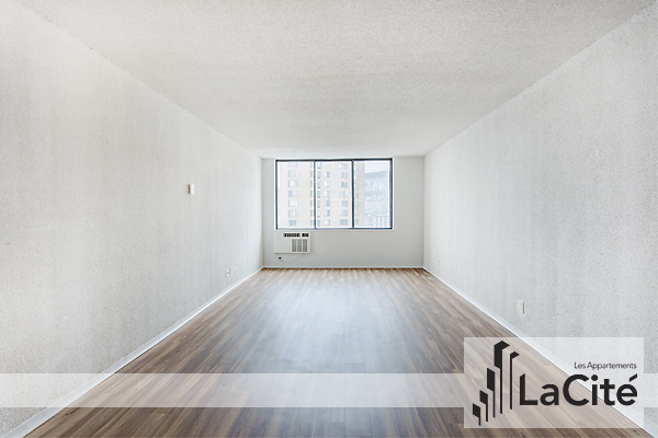 Montreal Central Apartment For Rent