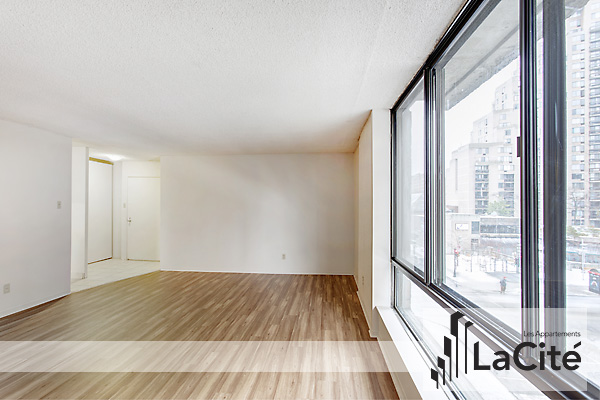 Montreal Central 3 bedroom Apartment For Rent