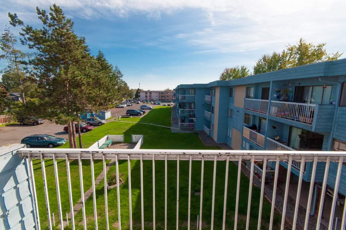 Surrey British Columbia Apartment For Rent