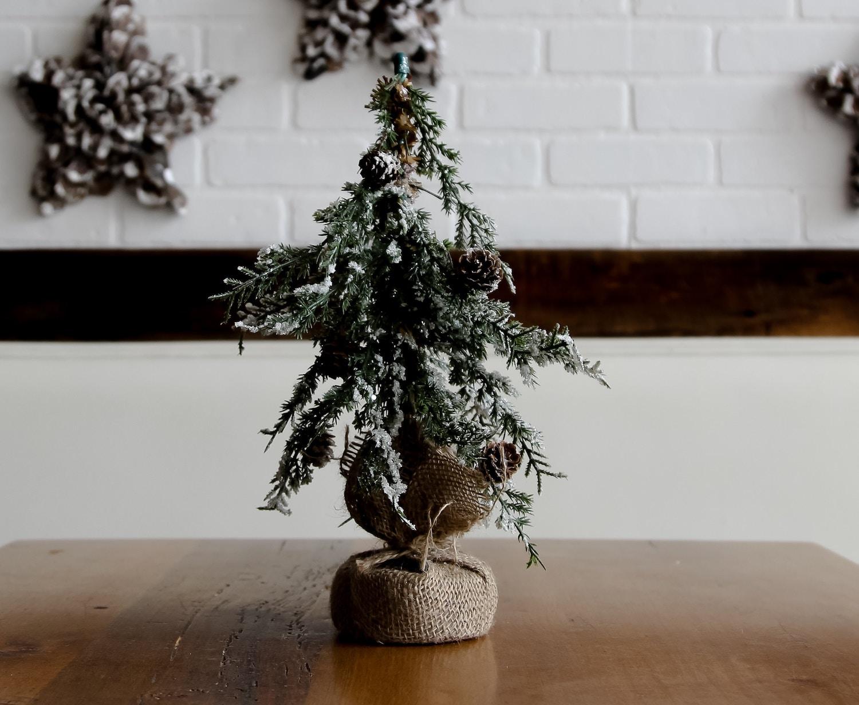 Post Image: Apartment-Friendly Christmas Tree Alternatives