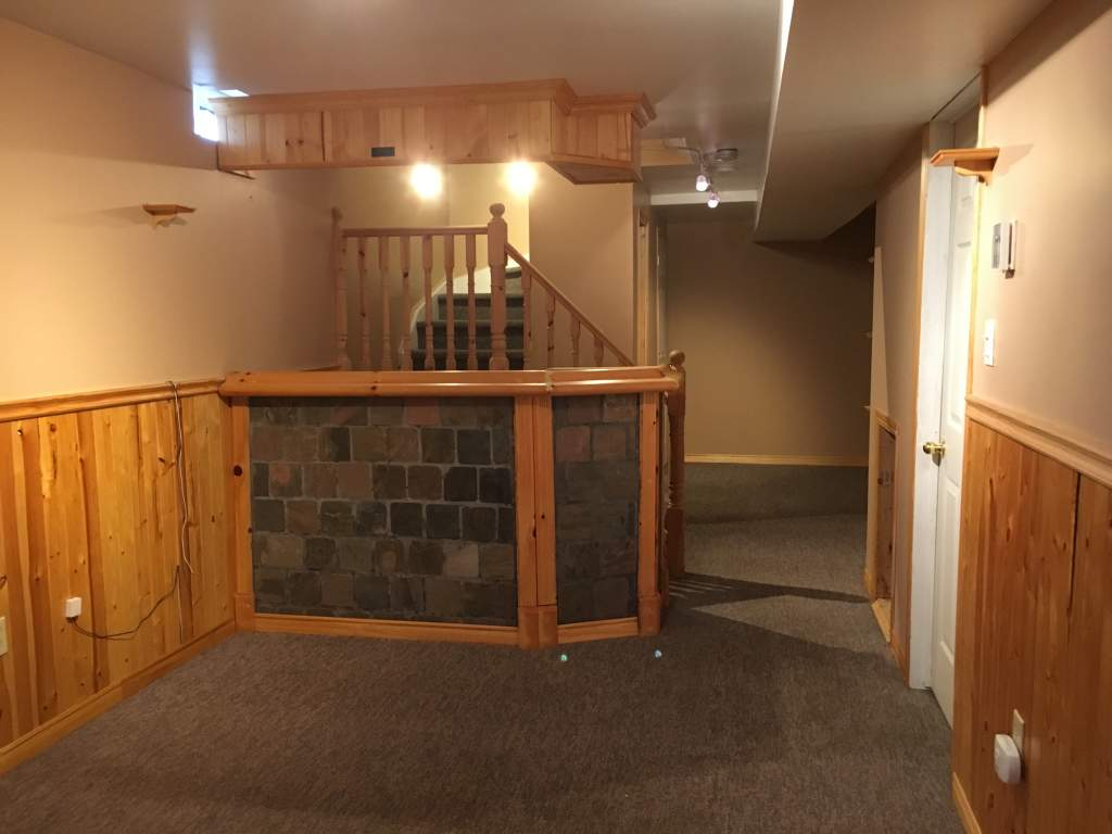 Rec Room or Spare Bedroom