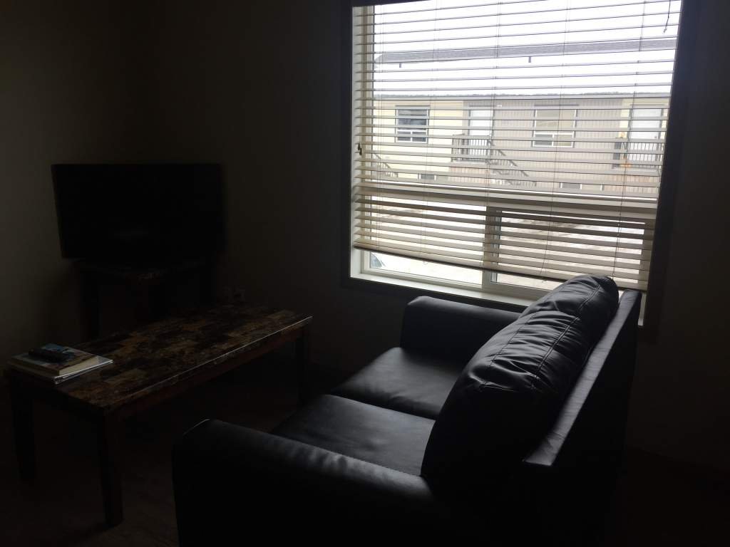 203, 9305 93 Street - Fully Furnished
