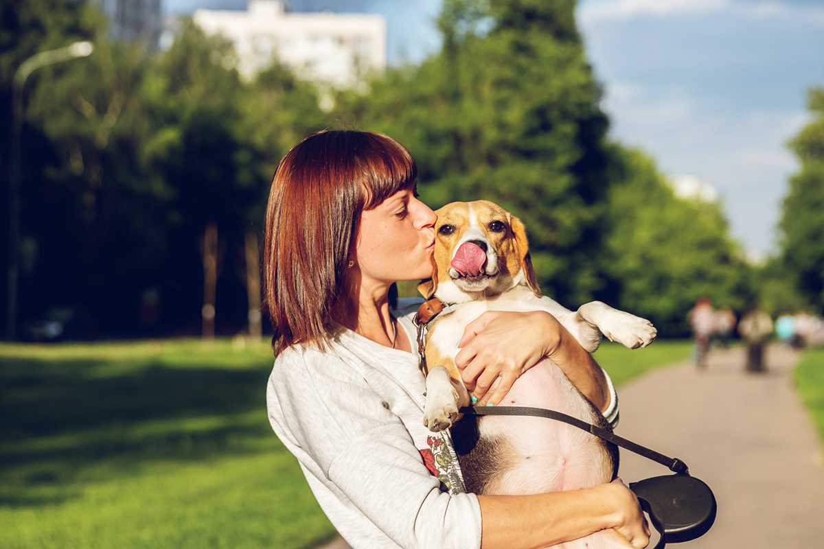 Pros and Cons of Pet Friendly Apartments