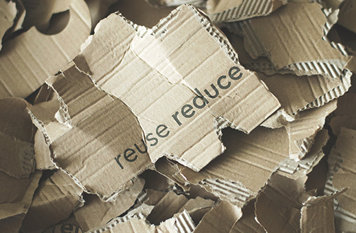 Recycle Better! Best Tips for Apartment Living