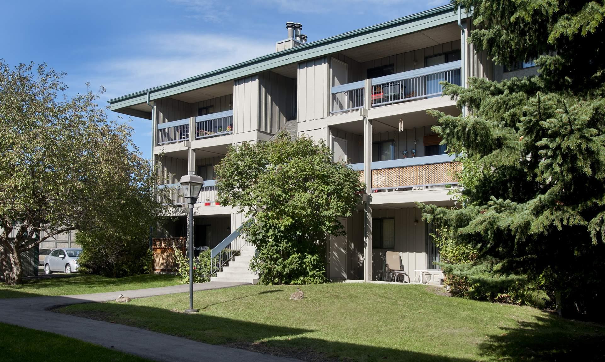 Cedars Of Calgary