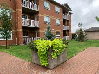 Apartment Building For Rent in  145 & 155 Notre Dame Street West, Azilda, ON