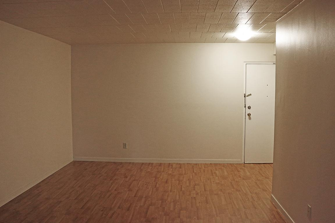 Windsor Ontario Apartment for rent, click for details...