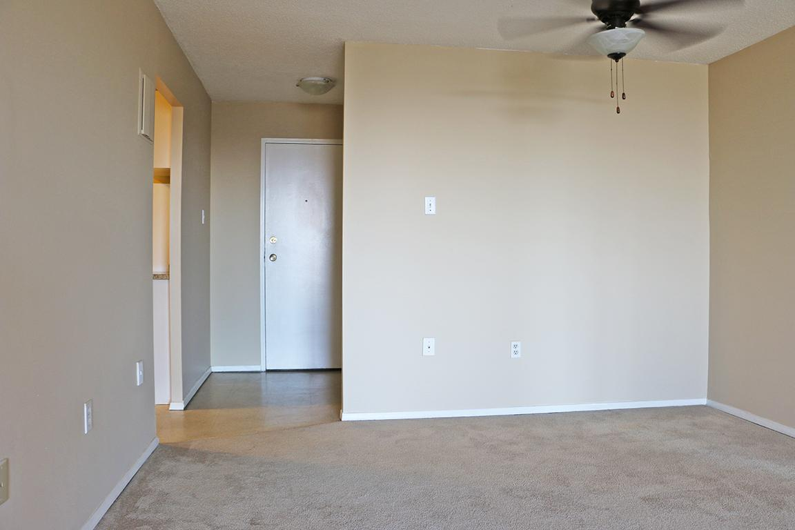 Brantford 1 bedroom Apartment