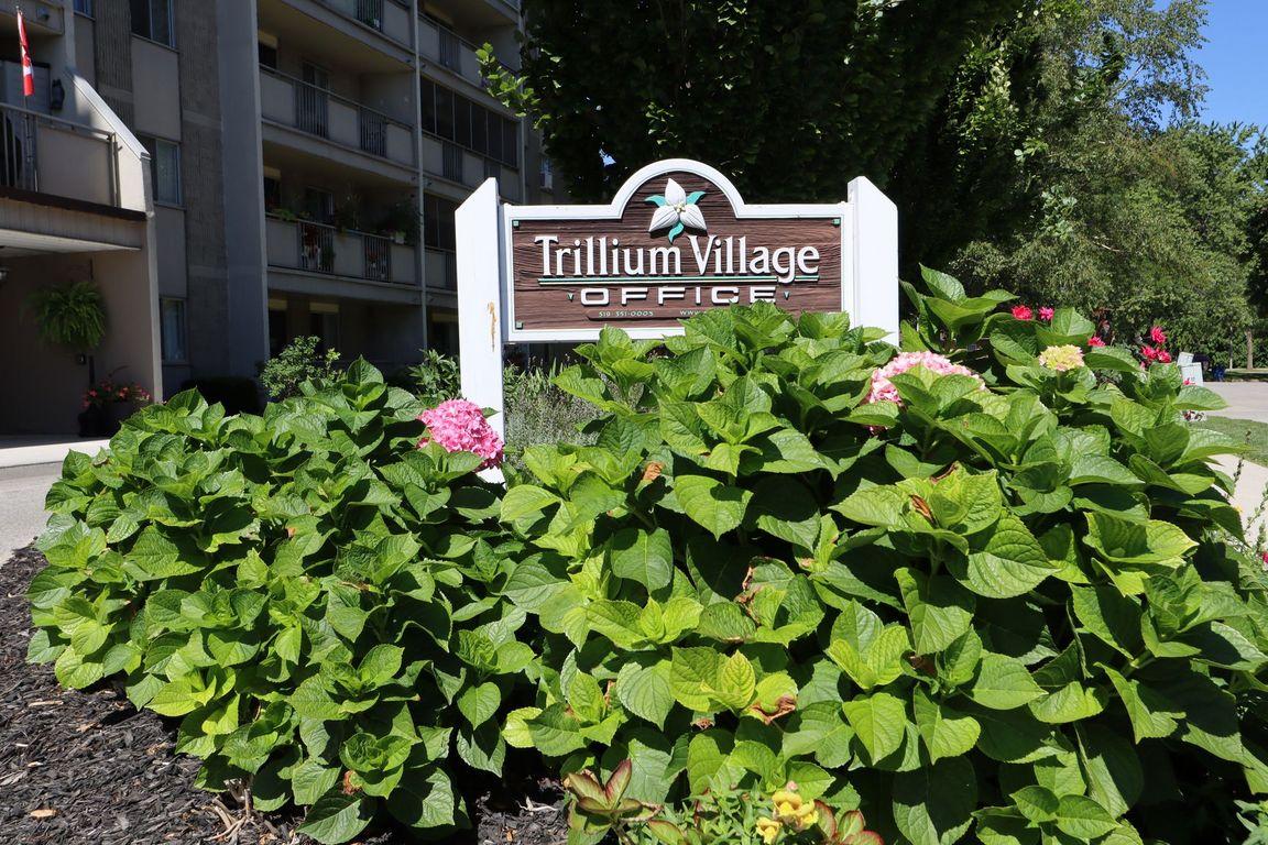 Trillium Village
