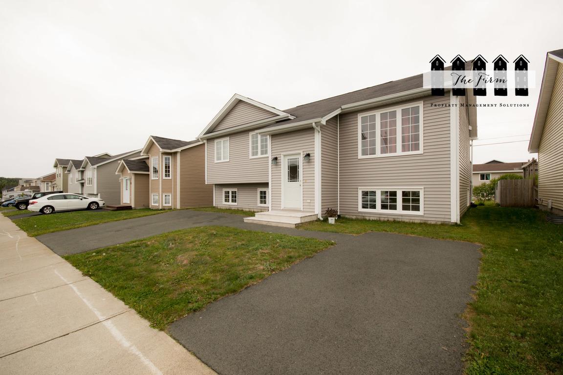 St. John's Terre-Neuve-et-Labrador Appartement à louer