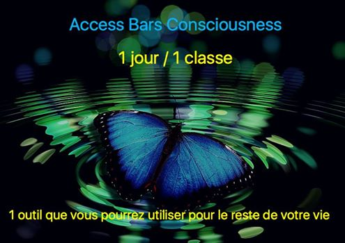 Formation certifiante Access Bars Consiousness toute la France Le Mans relaxation anti-age Access bars craniens