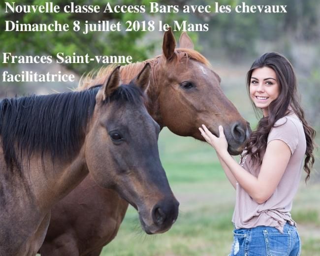 ARRÊT DU TABAC Access Bars Consciousness - relaxation anti-age Access bars craniens