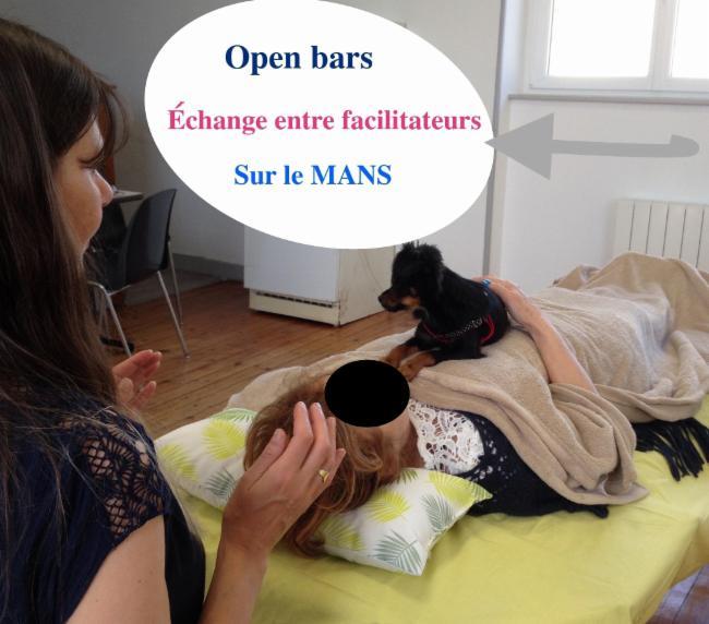 Open bars le mans soin énergétique intuition Nouveauté : soins énergétiques spirituels Access Bars Consciousness