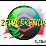 Zelia Brazilia Chaumont En Vexin produit cosmétique cheveux lissage