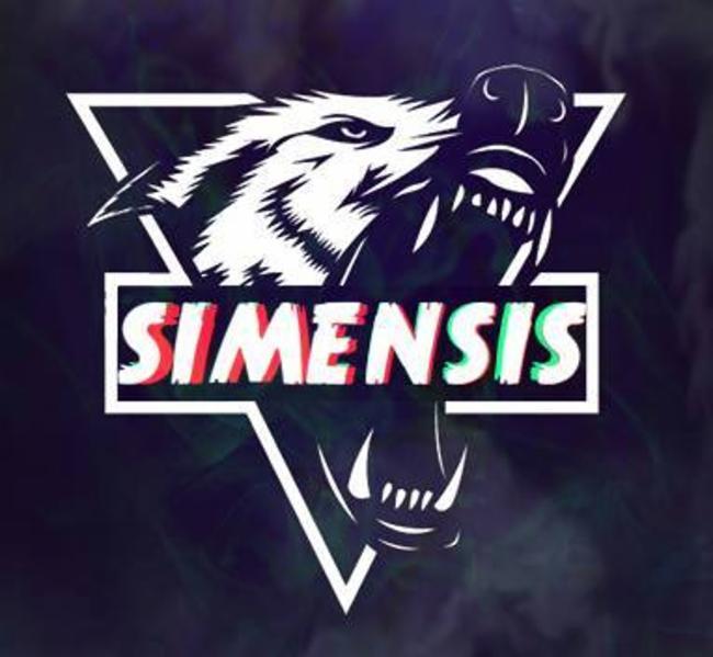 Team Simensis France Simensis Pro Player Gaming