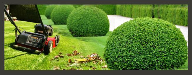 Entreprise Bourrat Plourivo paysagiste entretien des espaces vert paysagiste