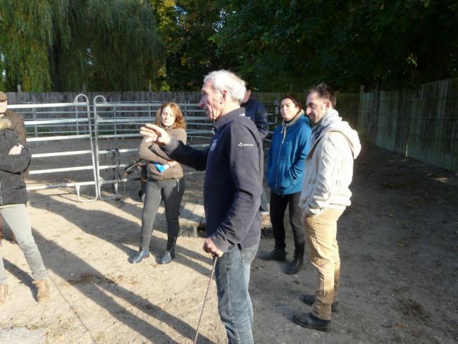 Pierre BLIN Lacroix Saint Ouen travail en securite avec les chevaux CONSEIL EN LIGNE