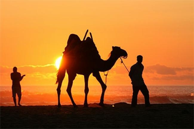 Voyage luxury Maroc Ouarzazate Trekking Organisation de bivouac Circuits su mesure