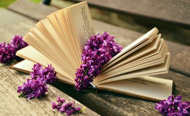 Livres en délire blog littéraire critiques de livres blog littéraire
