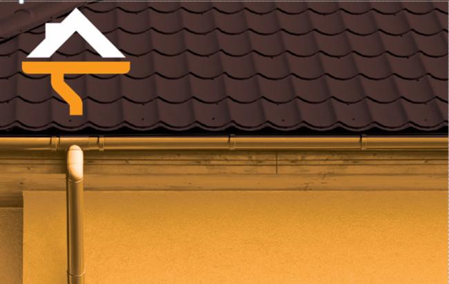 fabrice multi-services 42 Montrond-Les-Bains prestations de services nettoyages des toitures prestations de services