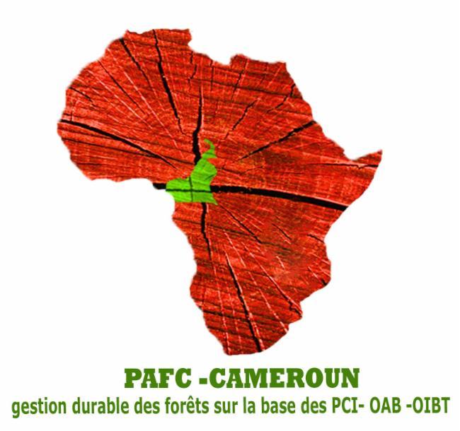 PAFC-CAMEROUN Yaoundé notre organisation est spécialisée dans la certification forestière et la traçabilité des produits bois pour leur reconnaissance et leur valorisation dans le marché international