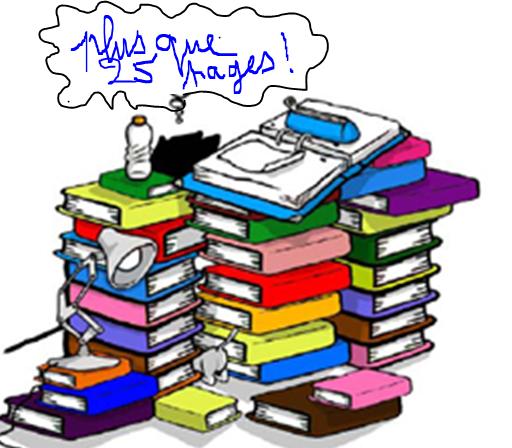 Rapport / Mémoire/ VAE : structure et corrections YVETOT Classement de papiers Soutien scolaire pour les plus jeunes - cycle 3 -