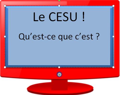 Le CESU sur internet