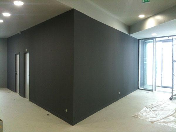 SN ENTREPRISE Grenoble Peintre en bâtiment Peinture Peintre en bâtiment