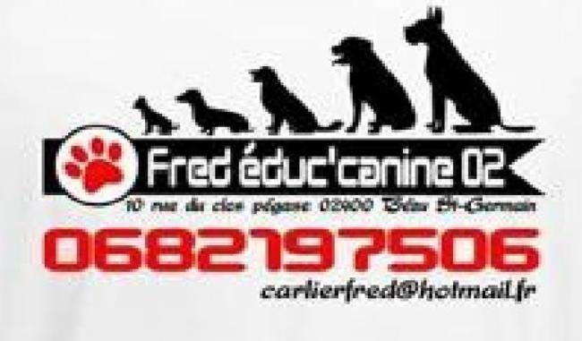 fred educ'canine 02 Bezu Saint Germain éducateur canin des education a votre domicile éducateur canin