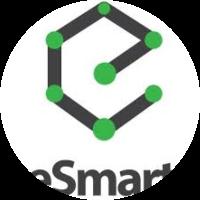 e-Smart Systems Pvt. Ltd.