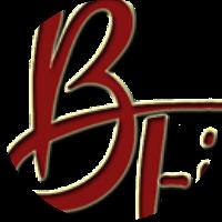 BT Infotech