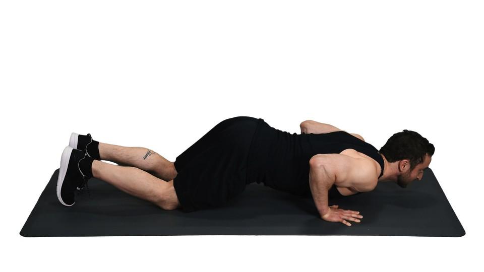 how to do four limbs pose