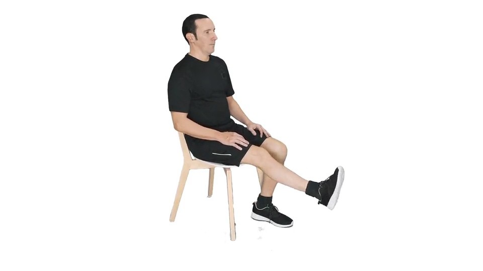 Leg Extension   Sworkit