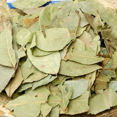 ZF Natco Bay Leaves (small size) 15g