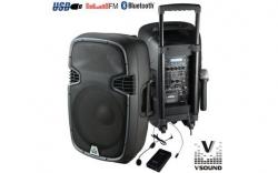 Coluna amplificada VSound VSSE15AWB/AWC/AWE - 600-900W - 15 polegadas - 2 Micros + USB + SD Cards + Bluetooth + Radio - a bateria/s