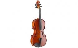 Violino Acustico Stagg VN-4/4 Violin Set - 4/4 - natural