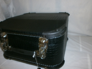 Small HARD CASE for most 31 Button Accordion New