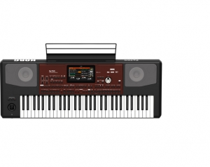 Korg Pa700 61-key Arranger Workstation