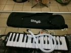 Melodica or...