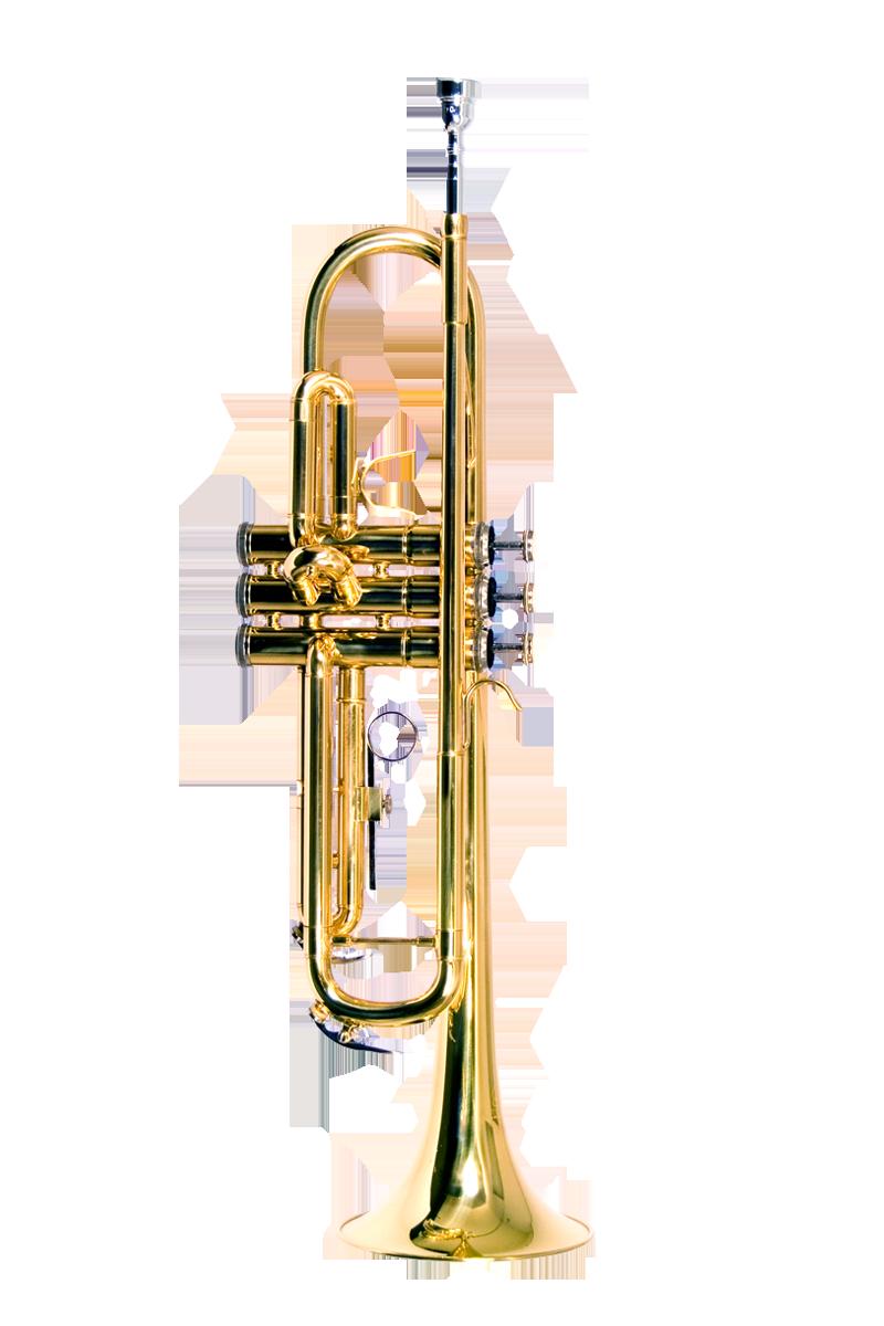 B U S A Wtr Lq Trumpet Lacquer Gold Color New