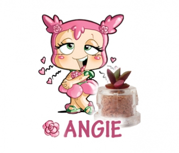 Angie - Amore