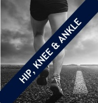 Sydney Hip, Knee & Ankle Workshop, Saturday 17th November, 2018