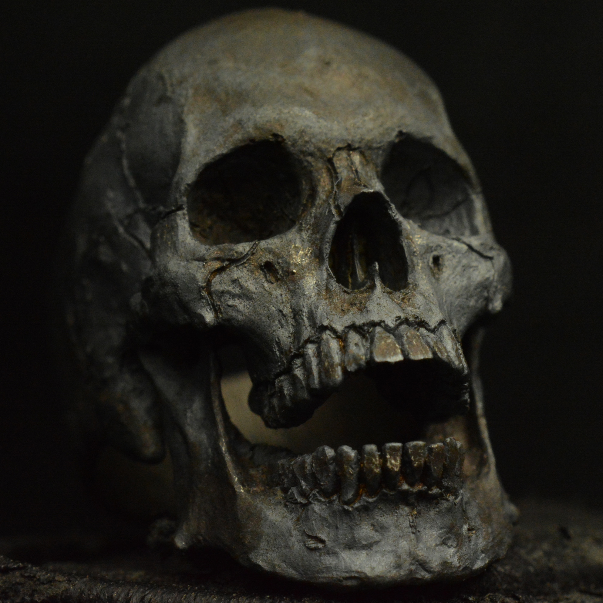 Beautiful Home Design Mid Size Open Jaw 925 Sterling Silver Skull Ring