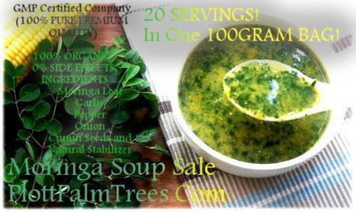 Ⓥ Genius Herbs- Moringa Soup PlottPalmTrees†©
