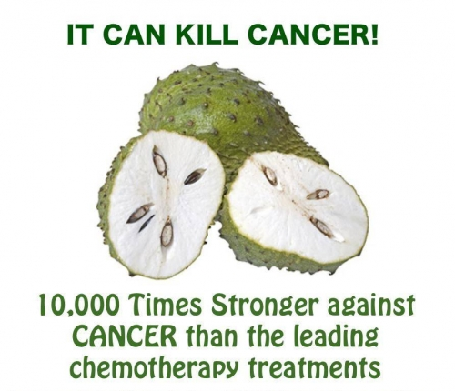 Health Benifits of Soursop & Increase low Platelet count naturally