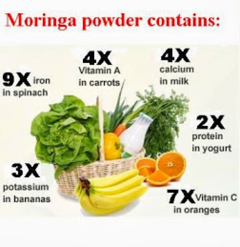 Moringa and Diabetes Treatment™