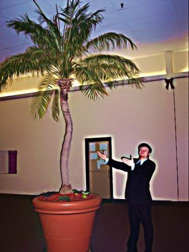 Palm Tree Symbolism