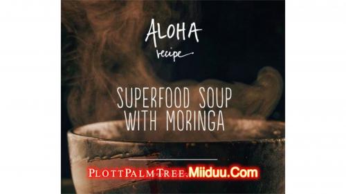 The Amazing Power of Moringa Soup Recipe