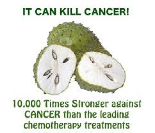 PubMED: 483 Scientific Articles On how Soursop Graviola  MORINGASOP Cures Cancer ~E.G.Plott~