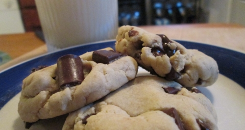 OOEY GOOEY CHOCOLATE CHIP COOKIE ~E.G.PLOTTPALMTREES.COM